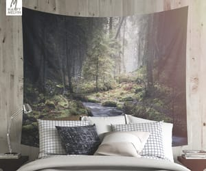 dorm room, forests, and nature photography image
