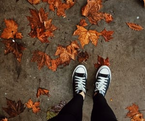autumm, converse, and street image