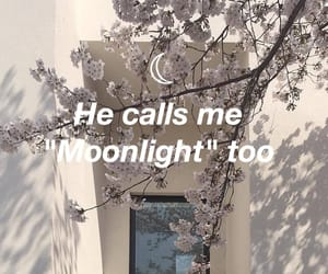 lyric, Lyrics, and moonlight image