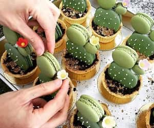cactus, food, and green image