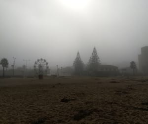 beach, ferris wheel, and fog image