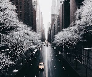 city, road, and fog image