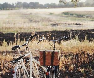 bike, nature, and autumn image