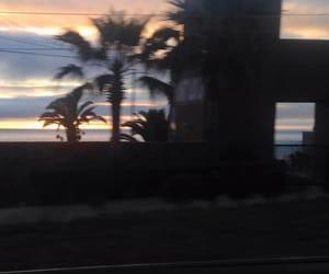 palm, rosarito, and beach image