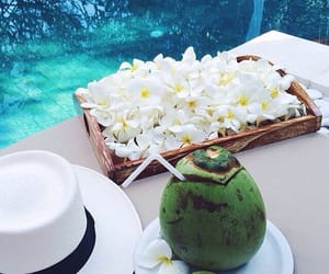 coconut, summer, and tropical image