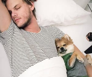 avicii and dog image
