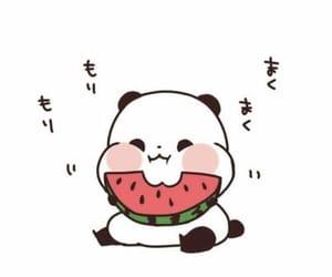 panda, watermelon, and funny image
