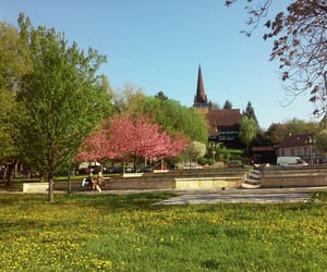 city, park, and spring image