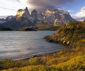 chile, nature, and meadow image