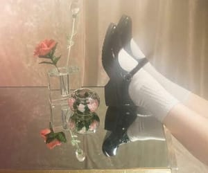 rose, shoes, and white image