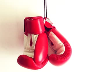 aesthetic, boxer, and boxing gloves image