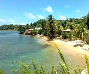 america, dominica, and beach image
