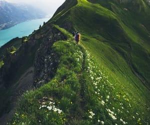 beautiful, nature, and nice image