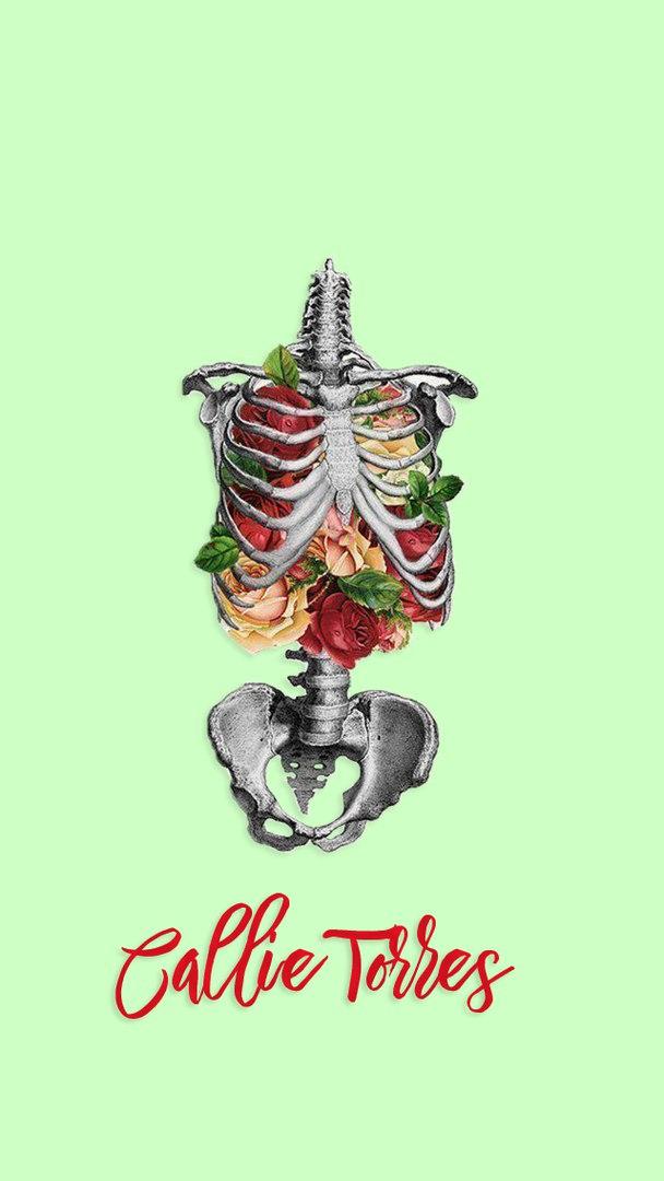 greys anatomy image