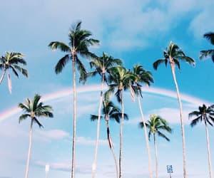 summer, beach, and rainbow image