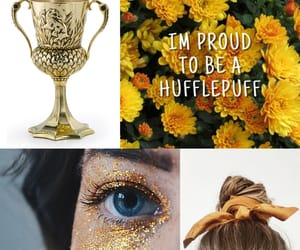 aesthetic, cedric diggory, and gryffindor image