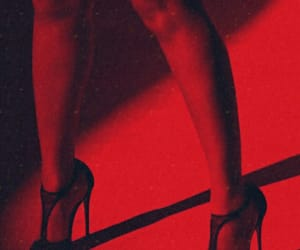 legs, photography, and red image