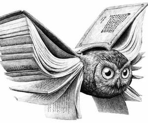 book, owl, and art image