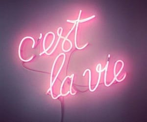 light, neon, and pink image