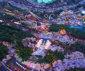 korea, nature, and pink image
