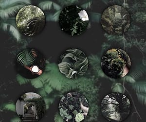 circles, collages, and green image