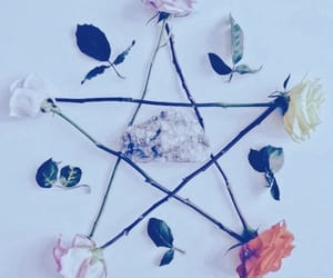 flowers and witch image