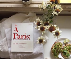 book, flowers, and paris image