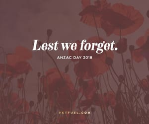 anzac and anzacday image