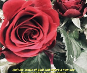 aesthetic, kings, and red roses image