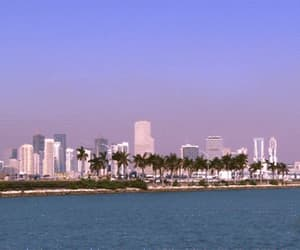 downtown, florida, and gif image