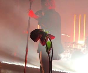 rose and luke hemmings image