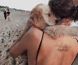 beach, beauty, and love dogs image
