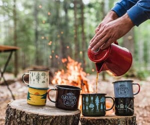 coffee, spring, and woods image