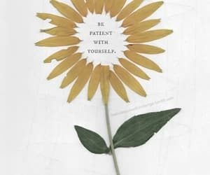 art, flowers, and patient image