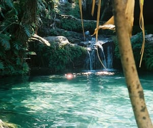 paradise, nature, and water image