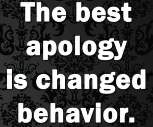 apology, life, and life quotes image