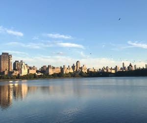 beautiful, Central Park, and discover image
