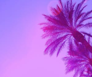 pink, purple, and palm trees image
