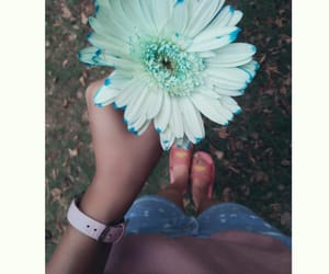 flowers, wildflowers, and springvibes image