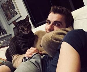 cat, dave, and delicious image