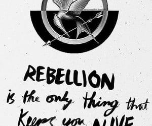 alive, destruction, and fire image