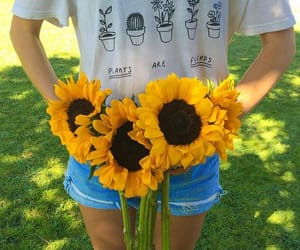 flowers, summer, and yellow image