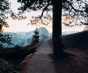 nature, adventure, and photography image