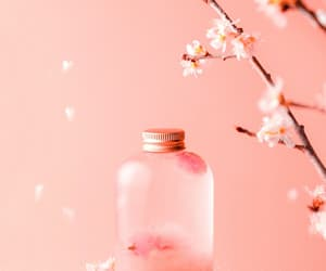 background, beauty, and bubbles image