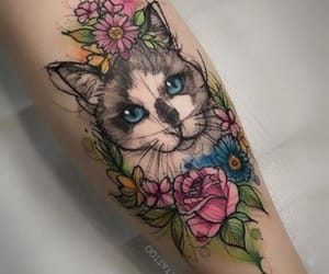 arm, cat, and colours image