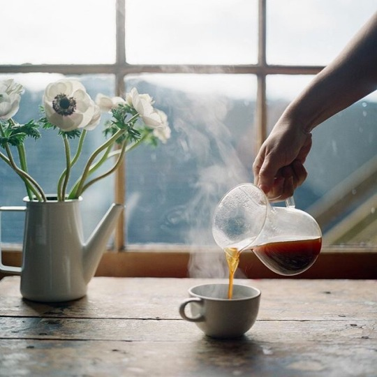 chill, coffee, and flowers image