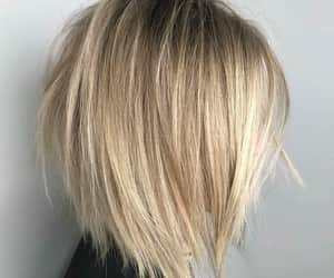 blond, bob, and hair style image