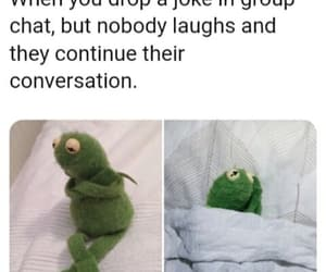 funny, kermit, and group chat image