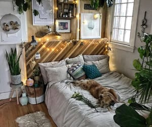 bedroom, dog, and room image