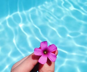 flower, hand, and relax image